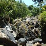 Im Urwald von Than Sadet bei Mavera