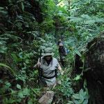 Unsere Gruppe durch den Dschungel