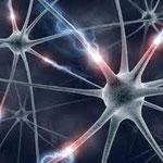Neuronen sind entzündet