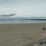 Strand von Saint Nic