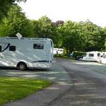 Camping Crystall Palace