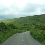 Road 3306