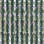 Lar Gibbon Lily Stripe