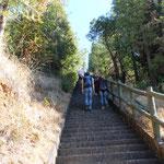 Aufstiegstreppe zum Vulkabnkrater