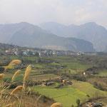 Bingzhongluo