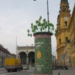 Litfaßsäule mit Metallgestell für echte Blumen