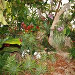 Regenwaldzelt für Lindenstrasse auf dem Marienplatz