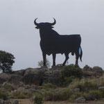 MADE IN SPAIN N-Va Km 257
