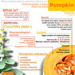 Pumpkin benefits