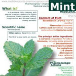 Mint benefits