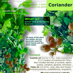 Coriander benefits