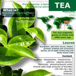 Tea properties