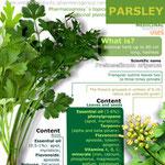 Parsley health benefits