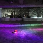 鮭スペアレ『マクベス』(2018.12 BUoY)