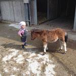 Kime mit Pony