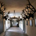 Im Jagdschloss Kranichstein (Foto: Erich Hohn)