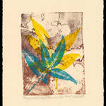 Blue and Yellow leaves 2 litho/mono print
