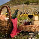 pique nique dans les vignes dans l'aude