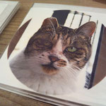 """cats feelings & Yanaka skies"" greeting card with envelope - ¥378"