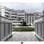 FOTOGRAFIA N. 25