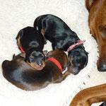 """Onnie mit ihren drei """"Mädels"""", 01.10.2010"""