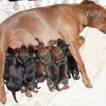 Stolze Mama Onnie !!