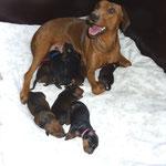 05.10.2010, Bin ich nicht eine gute Mama ???!!