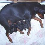 Alle haben die Geburt gut überstanden.