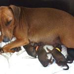 Während der Geburt, die ersten 4 stärken sich schon mal !!