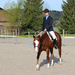 Anouk Bär mit ihrem QH Wallach BW Rony Sugar Canyon im Hunter Under Saddle