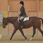 Chantale Wellauer mir ihrer QH Stute Grand Revolution im Hunter Under Saddle.