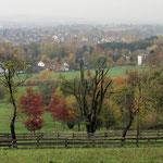 Herbst im Staff-Landschaftspark