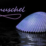 Kuschel-Muschel