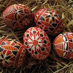Original böhmische Eier