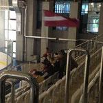Selbst hier beim Minsk-Cup waren lettische Fans vor Ort