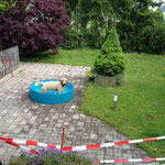 in seinem Pool