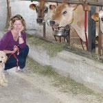 Dosty darf Dryas Kühe kennen lernen
