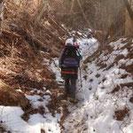 登り始めて15分位から雪が