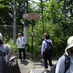 玉川上水緑道を歩きます