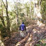 11:09 雑木林を歩く