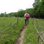 高原を歩く雰囲気