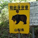 9:33 熊はやはり怖いです