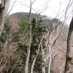 12:39 下山後、しばらくして振り返ると、櫟山の全容が見えました。