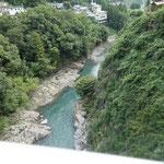 桂川が綺麗でした