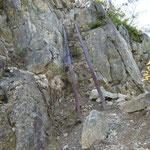 この鉄梯子は崖のすぐ横だ