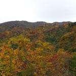 紅葉が進んでいます