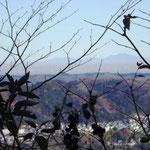 10:00 愛宕山から眺められた筑波山