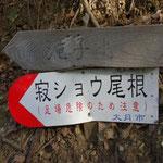 9:12 林道を渡ったところに登山道があります