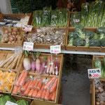 野菜を売っています