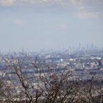 13:15 新宿ビルやスカイツリーまで眺められます